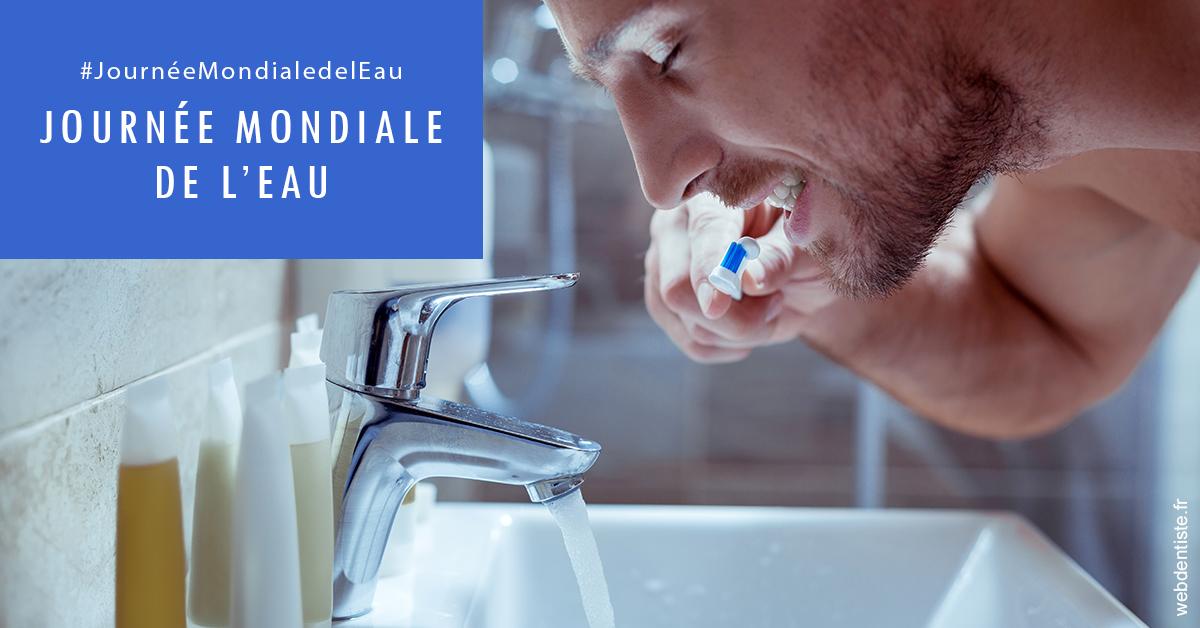 https://www.cabinet-dentaire-jardin-des-plantes.fr/Journée de l'eau 2