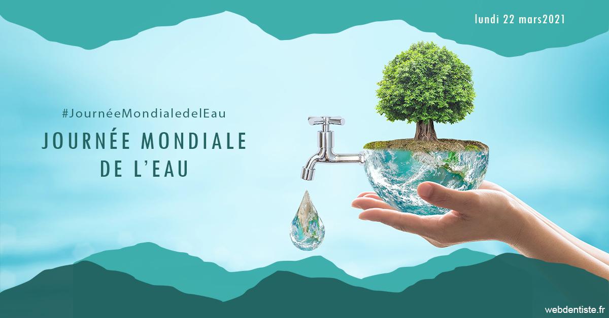 https://www.cabinet-dentaire-jardin-des-plantes.fr/Journée de l'eau 1